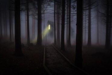 foggy-545838__340