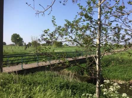 teeuwkesbrugclaerhoutwilly